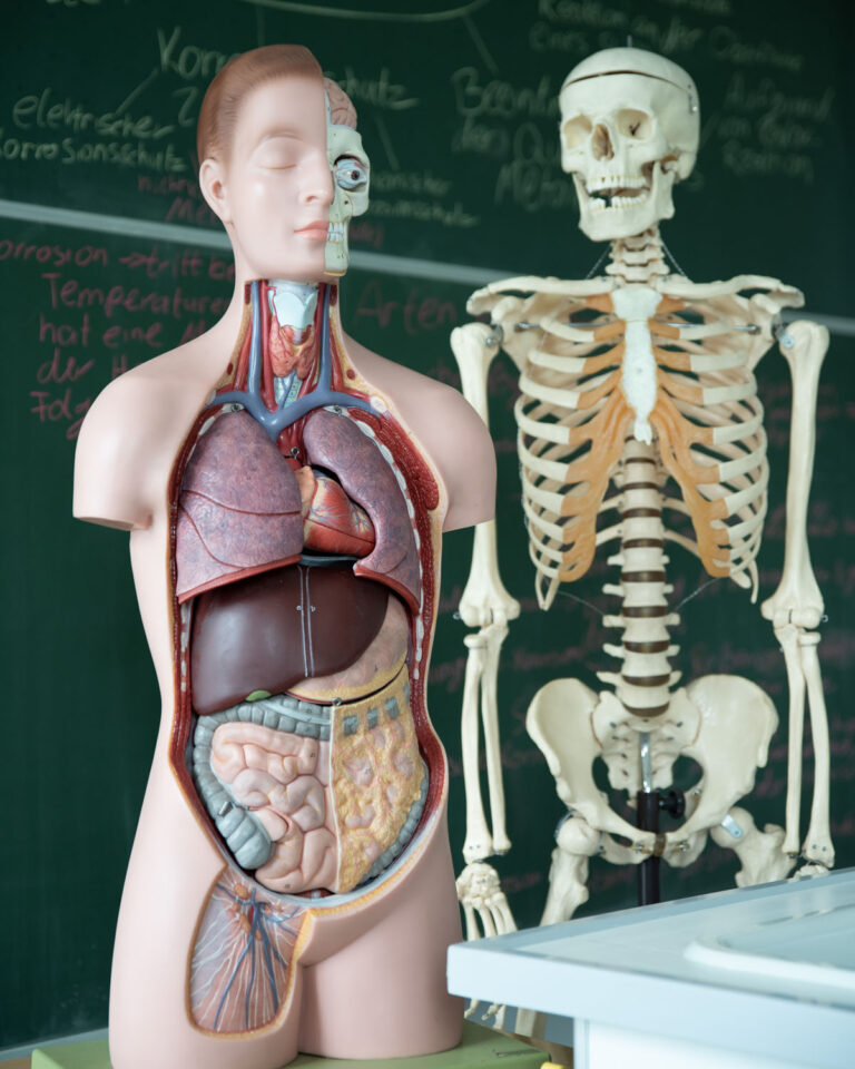 Gesundheitsvorsorge und Suchtprävention