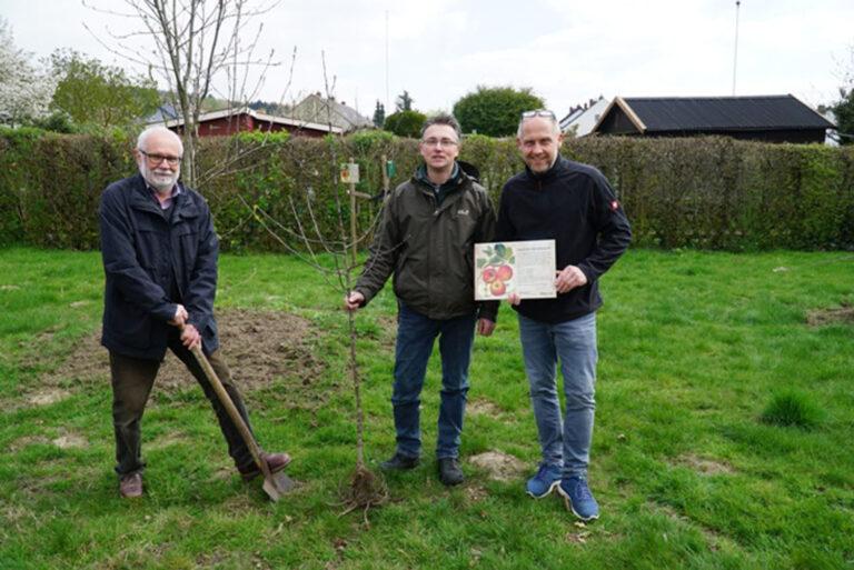 10 Jahrgang stiftet Apfelbaum als Abschiedsgeschenk